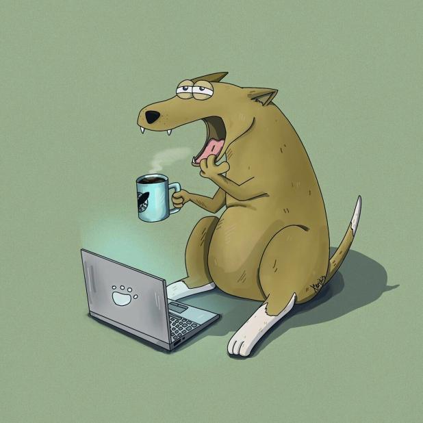 Смешные будни картинки, открытки мишкой